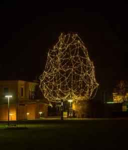 Grafenegg Shcloss Nacht-050076