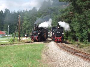 Doppelausfahrt Waldviertler Schmalspurbahn
