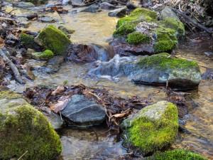 Steine im Bach im Reisperbachtal