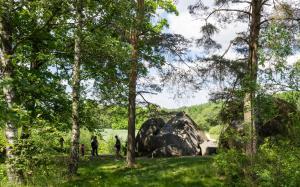 Blockheide Gmünd Felsblock m Wald