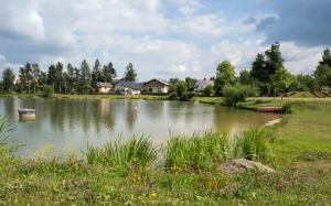 Teich Ottenschlag Ufer