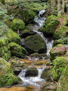 Wasserfall Ysperklamm 1
