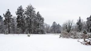Winter Park Grafenegg 12