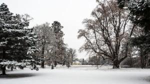 Winter Park Grafenegg 10