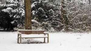 Winter Park Grafenegg 8