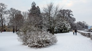 Winter Park Grafenegg 3