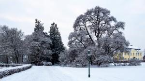 Winter Park Grafenegg 15