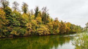 Fluß Steyr
