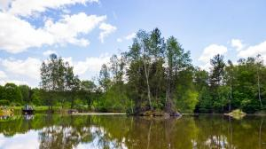 Blockheide Gmünd Teich