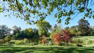 Grafenegg Herbst im Park Teich 1