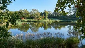 Grafenegg Herbst im Park Teich 5