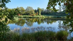 Grafenegg Teich Herbst 1