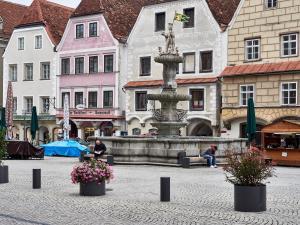 Zentrum  in Steyr 3
