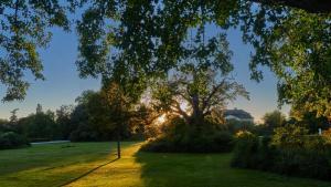 Grafenegg Herbst im Park Sonnenuntergang 2