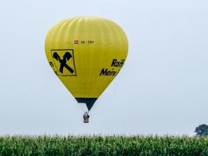 Heißluftballon Reifeisen gelb Feld