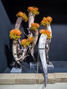Blumenhörner 2