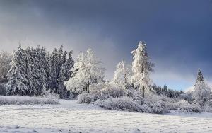 Winter im Waldviertel