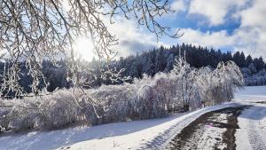 Harbach Winter 2021 Neuschnee in Harbach