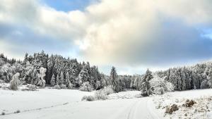 Harbach Winter 2021Neuschnee in Harbach