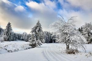 Waldviertel Harbach Winter 2021 2021