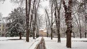 Stadtpark Krems